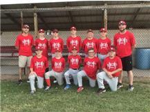 2019-2020 Team