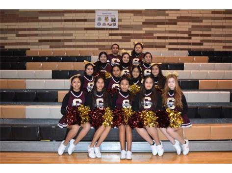 2018-19 Junior Varsity Cheerleading