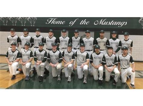 2020 Varsity Baseball