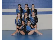 2015-2016 Varsity Gymnastics