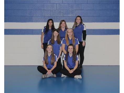 2015-2016 Girls Bowling
