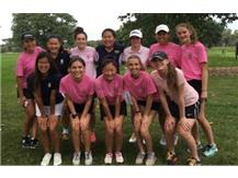 The Spartans & the Titans played in a mixed team pink ball scramble at Anets.