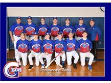 Reserve Baseball 2017