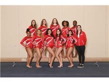 Varsity Girls Gymnastics (19-20)