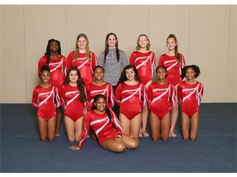 Varsity Girls Gymnastics (18-19)