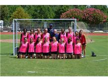 JHS Plays for the Cure