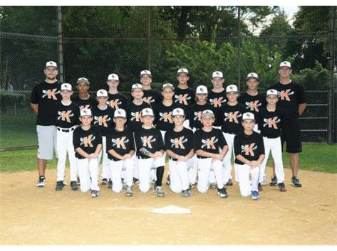 2016 Baseball B team