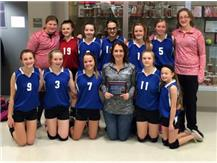 3rd Place finish in Alton Tourney