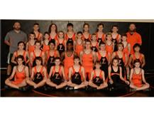LMS Wrestling Team