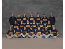 2015 Varsity Baseball Team