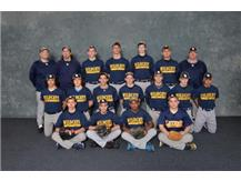 2016 Wildcat Baseball Team