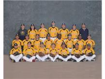 2017 Wildcat Baseball Team