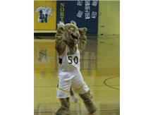 Willie the Wildcat