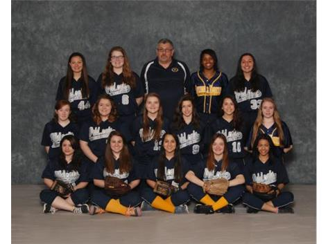 2015 Softball Team