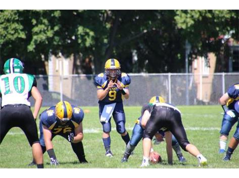 Marcus Wenzel quarterbacking the Wildcat offense