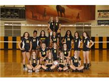 Girls Sophomore Volleyball 2016