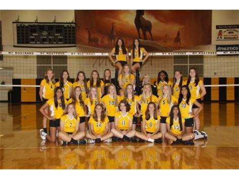 Girls Freshman Volleyball 2016