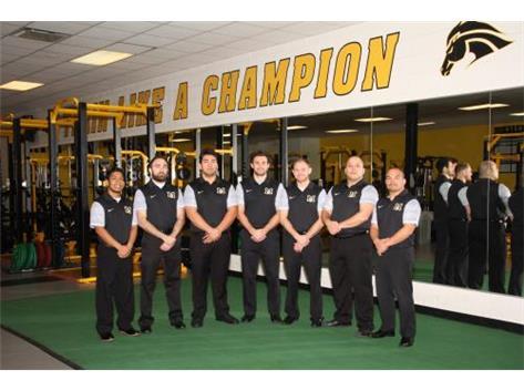 Wrestling Staff