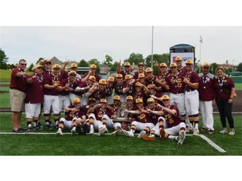 State Champs IHSA 3A 2019