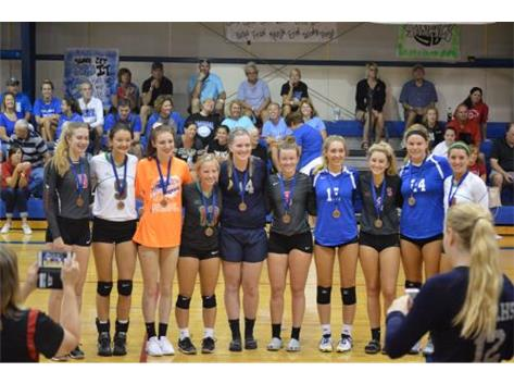 """Senior Jossie Weller and Sophomore Lindsey Dullard are awarded """"All-Tournament Team"""" at the Springfield Lutheran Tournament."""