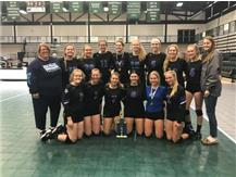 2018 Lady Norsemen Volleyball - 2nd place finish at Illinois Wesleyan Tournament