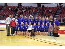 2019 IHSA Class 1A State Champions
