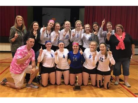 2017 Volleyball LTC Champions