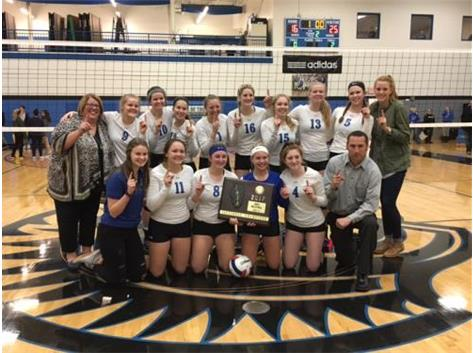 2017 IHSA Class 1A Volleyball Sectional Champions