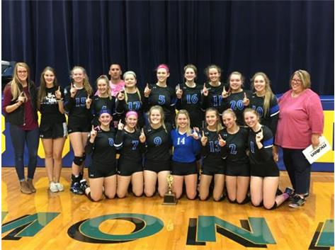 2018 Lady Norsemen Volleyball - LTC Champions