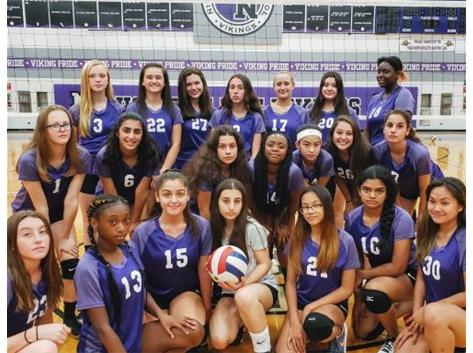 Introducing the Niles North Girls Freshman Team 2019