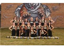 2018 Competitive Dance Team