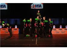 The Competitive Varsity Pom Dance Team competes at IHSA State, placing 15th out of 81 Teams enrolled in the State Series!