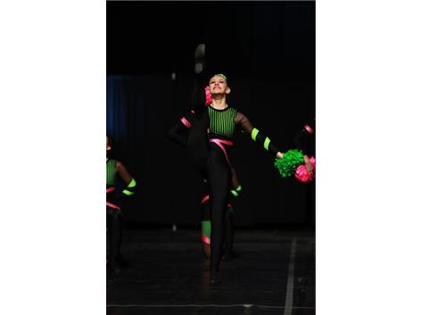 Julia Dudich, a Sophomore member of the Varsity Pom Dance Team, competes on the IHSA State Floor.