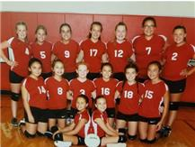 The 2018 Seventh Grade Eagle Volleyball Team