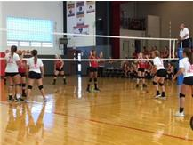 DLR is ready to serve receive against the Cardinals.