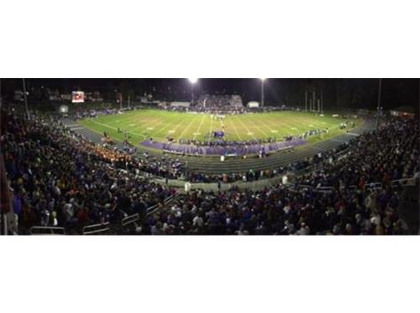 TIGER STADIUM - HOME OF THE TIGERS!