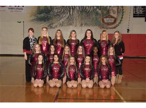 2013-14 Competitive Dance Team