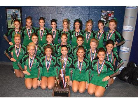 2014 Varsity Cheerleaders -- 3rd at State!