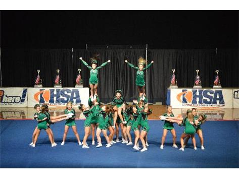 2014 -- Sophomore Carson Sineni and freshman Lexi Vennetti perform dismounting fly-outs at the end of the pyramid at the IHSA State Championships.