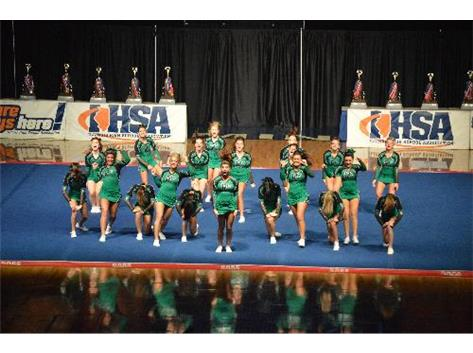 The 2014 Varsity cheerleaders performing their dance during the IHSA State Finals.