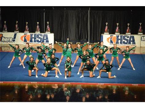 The 2014 Varsity cheerleading team hits their final pose during Finals of the IHSA State Cheerleading Championship.