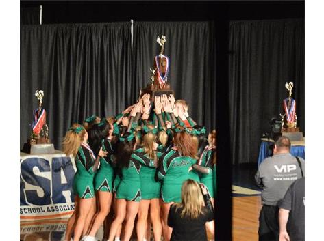 Congrats to the 2014 Varsity Celtics on their Third Place finish at the IHSA State Cheerleading Championship!