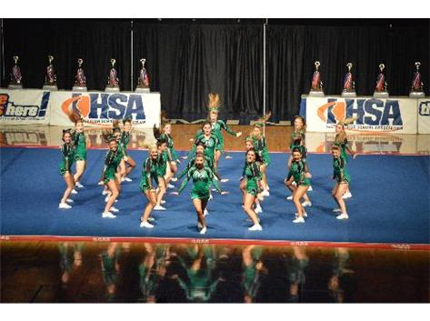 2014 Varsity Cheer Team displaying lots of energy and synchronization during their performance at the IHSA State Championship.