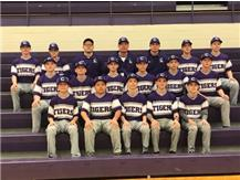2019 eighth grade baseball team