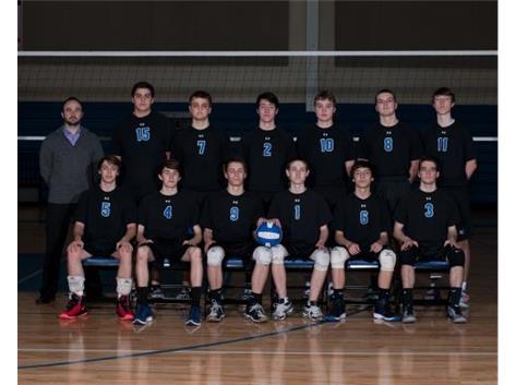 2014-15 JV Boys Volleyball