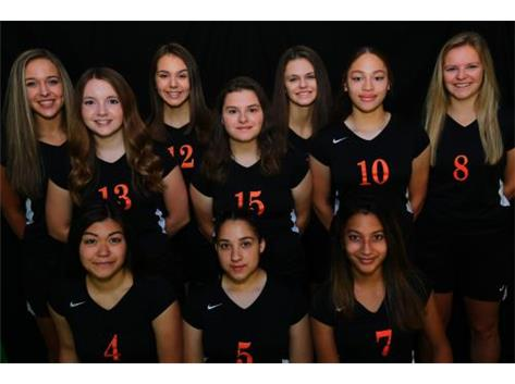 V Volleyball 2019