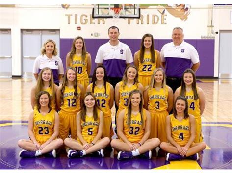 Varsity Girls  Basketball 2019-20