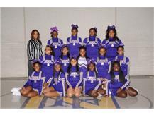 Junior Varsity Cheer 2015-2016