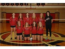 JV Volleyball 2014