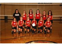 8th Grade Volleyball 2016